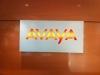 avaya-reception-illuminated